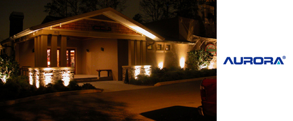 We have all sorts of outdoor wall lights from Aurora Lighting, ideal for creating a lighting feature outside the home