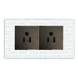 Hamilton Perception Clear 2 Gang 15A 127V American Unswitched Socket with Black Insert