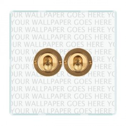 Hamilton Perception Clear 2 Gang 2 Way Dolly with Satin Brass Insert