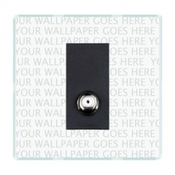 Hamilton Perception Clear 1 Gang Isolated Satellite with Black Insert