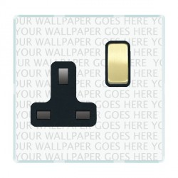 Hamilton Perception Clear 1 Gang 13A Switched Socket - Double Pole with Black Insert