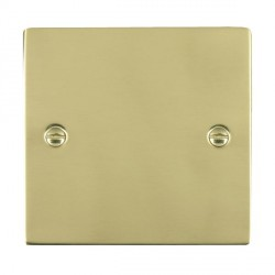 Hamilton Sheer Polished Brass Single Blank Plate