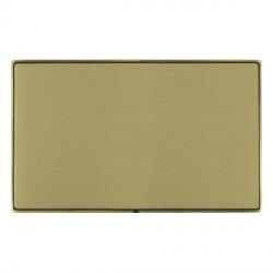 Hamilton Linea-Duo CFX Antique Brass/Satin Brass Double Blank Plate
