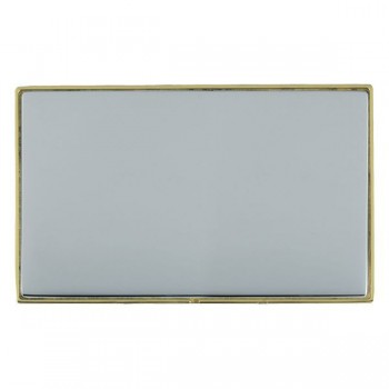 Hamilton Linea-Duo CFX Polished Brass/Bright Steel Double Blank Plate