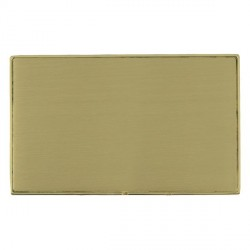 Hamilton Linea-Duo CFX Polished Brass/Satin Brass Double Blank Plate
