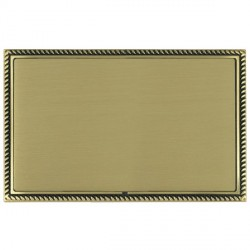 Hamilton Linea-Georgian CFX Antique Brass/Satin Brass Double Blank Plate