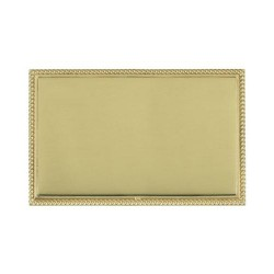 Hamilton Linea-Perlina CFX Polished Brass/Polished Brass Double Blank Plate