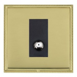 Hamilton Linea-Perlina CFX Polished Brass/Polished Brass 1 Gang Non Isolated Satellite with Black Insert