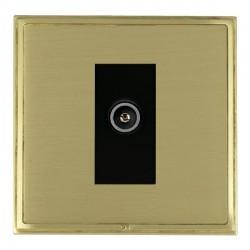 Hamilton Linea-Scala CFX Satin Brass/Satin Brass 1 Gang TV (Female) with Black Insert