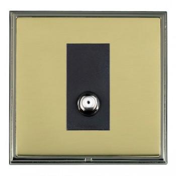 Hamilton Linea-Scala CFX Black Nickel/Polished Brass 1 Gang Non Isolated Satellite with Black Insert