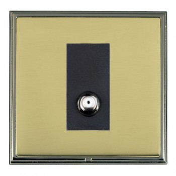 Hamilton Linea-Scala CFX Black Nickel/Polished Brass 1 Gang Isolated Satellite with Black Insert