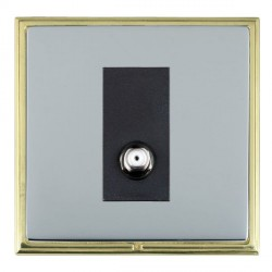 Hamilton Linea-Scala CFX Polished Brass/Bright Steel 1 Gang Non Isolated Satellite with Black Insert