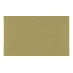Hamilton Sheer CFX Satin Brass Double Blank Plate