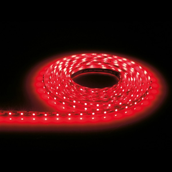 Led Rope Light Section Not Working: Aurora Lighting 12V DC LED Single Colour Flexible LED