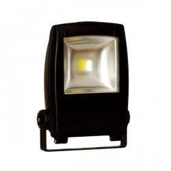 Auraled 10W Black LED Floodlight