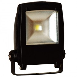 Auraled 30W Black LED Floodlight