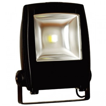 Auraled 50W Black LED Floodlight