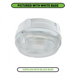 Ansell Delta CFL 16W Black Bulkhead with Prismatic Diffuser