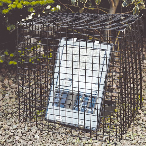 Ansell Floodlight Wire Cage - 500x500x500mm at UK Electrical Supplies.