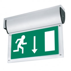 Aurora Lighting AU-LG2D AU-EMLED21/22/24 Down Emergency Exit Legend