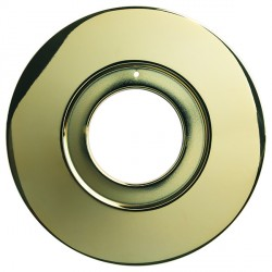 Collingwood Halers DL/CONVERT PG Polished Gold Converter Plate for Halers H2 Pro
