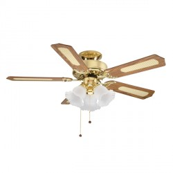Fantasia EuroFans Belaire 42 inch Pull Cord Polished Brass Ceiling Fan with Reversible Matt Oak and Cane/Mahogany Blades and 3 Light Cluster