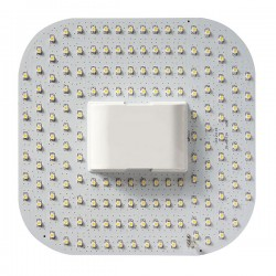 Bell Lighting 12W Cool White Non-Dimmable GR10q 4-Pin LED 2D Lamp