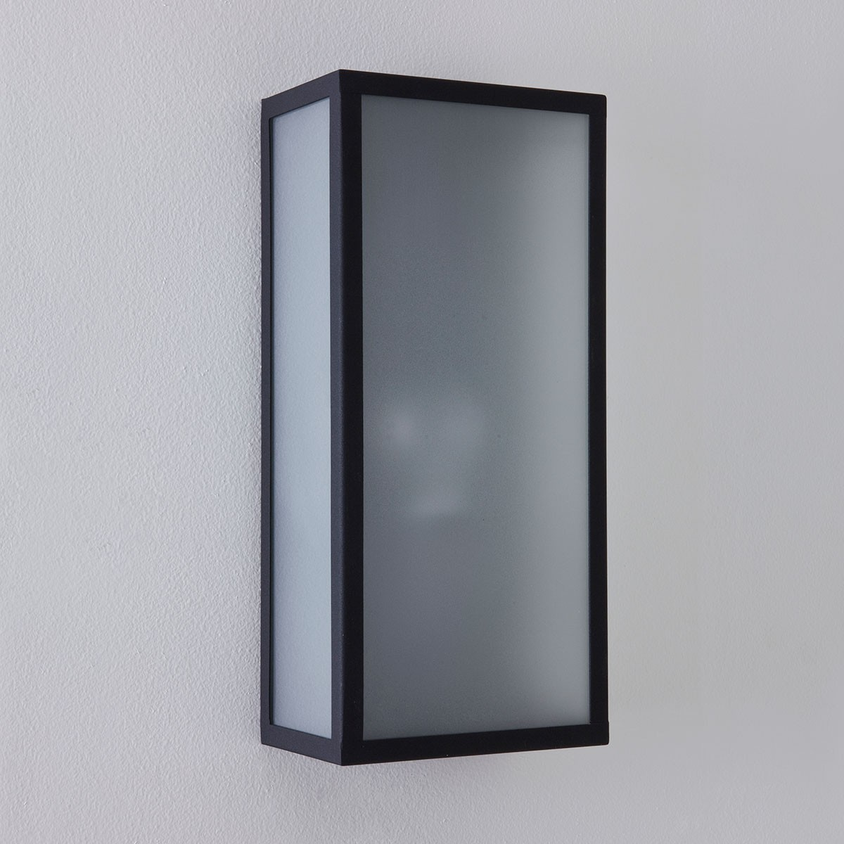 Wall Lights Frosted Glass : Astro Messina Black with Frosted Glass Outdoor Wall Light at UK Electrical Supplies.