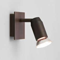 Astro Magna Single Bronze Spotlight