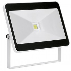 Enlite QuaZar 50W 4000K White Driverless LED Floodlight