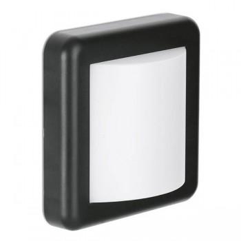 Aurora Lighting WallE IP65 4W 3000K Square LED Wall Light