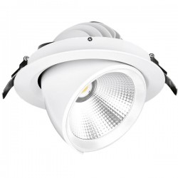 Aurora Lighting Apex 30W 4000K Non-Dimmable Adjustable LED Retail Wallwasher - 24°