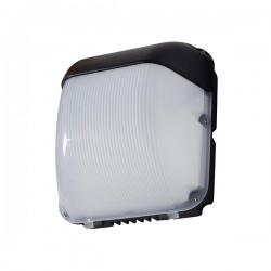 Robus Falcon 50W 5500K Outdoor LED Wall Light with Photocell