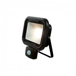 Robus Remy 20W 4000K Black LED Floodlight with PIR Sensor