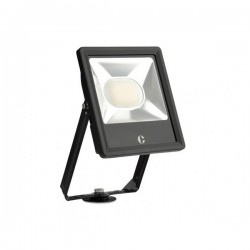 Collingwood Colour Switchable 50W LED Floodlight