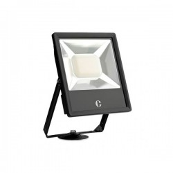 Collingwood Colour Switchable 100W LED Floodlight