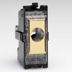 Varilight PowerGrid Polished Brass 16A Flex Outlet Module