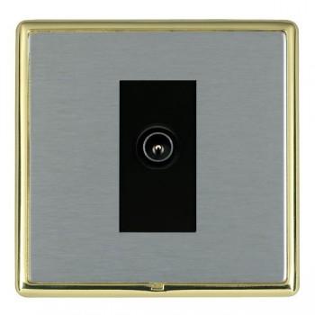 Hamilton Linea-Rondo CFX Polished Brass/Satin Steel 1 Gang TV (Male) with Black Insert