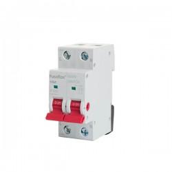FuseBox 100A 2-Pole Isolator/Main Switch