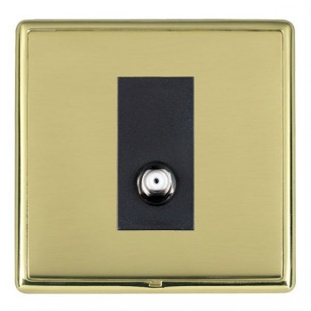 Hamilton Linea-Rondo CFX Polished Brass/Polished Brass 1 Gang Isolated Satellite with Black Insert