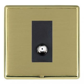 Hamilton Linea-Rondo CFX Polished Brass/Satin Brass 1 Gang Isolated Satellite with Black Insert