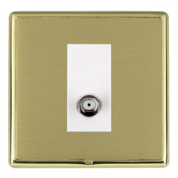 Hamilton Linea-Rondo CFX Polished Brass/Satin Brass 1 Gang Isolated Satellite with White Insert