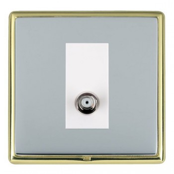 Hamilton Linea-Rondo CFX Polished Brass/Bright Steel 1 Gang Non Isolated Satellite with White Insert