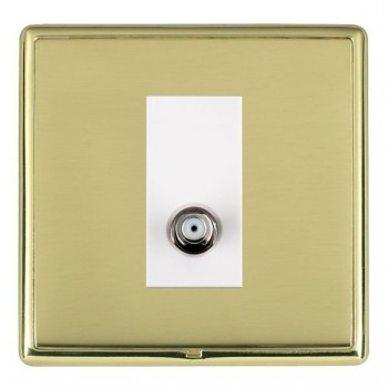 Hamilton Linea-Rondo CFX Polished Brass/Polished Brass 1 Gang Non Isolated Satellite with White Insert